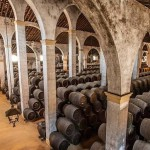 7-Day tour Best wine production regions of the central and northern spain